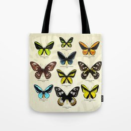 Butterfly12_Ornithoptera Set1 Tote Bag