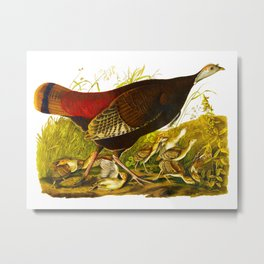 Great American Hen Metal Print
