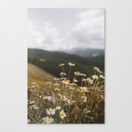 Stopping Point to Mt Rainier Canvas Print
