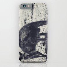 Unamused iPhone 6s Slim Case