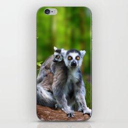 Ring Tailed Lemurs iPhone Skin