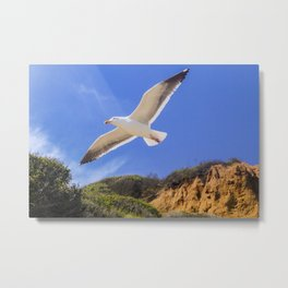 Golden Seagull Metal Print