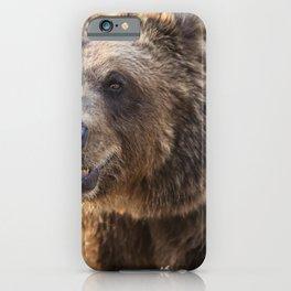 Brown bear baring his teeth at the Wild Animal Sanctuary near Keenesburg Colorado iPhone Case