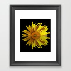 sunflower in the mirror Framed Art Print
