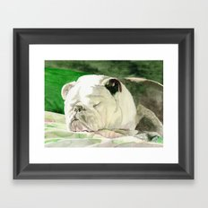 Rufus the Bulldog Framed Art Print