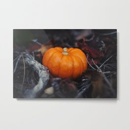Mini Pumpkin Metal Print