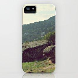 Nature rocks iPhone Case