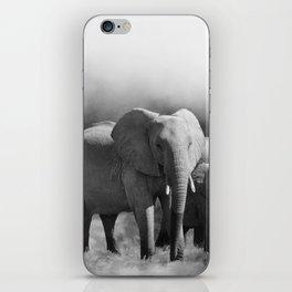Elephants Shades Of Grey iPhone Skin