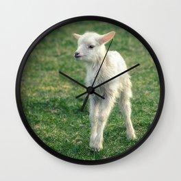 Baby Lamb Wall Clock