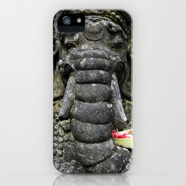 In Stone iPhone Case