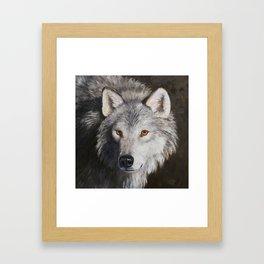 Gray Wolf Face Framed Art Print