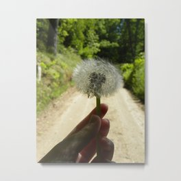 A Wish for the Road Metal Print