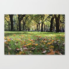 Leaves on Grass 2 Canvas Print