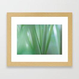 Flower stems macro Framed Art Print