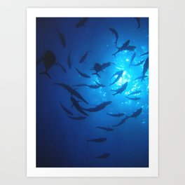 Fish Swarm Underwater Art Print