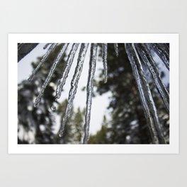 Ice Ice Baby in Lake Tahoe Art Print