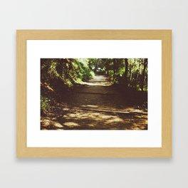 Parc del Laberint d'Horta II Framed Art Print