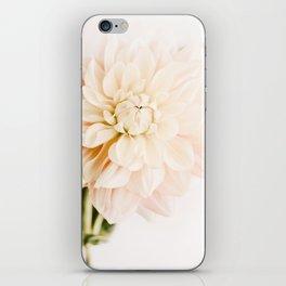 Vanilla Truffle Dahlia iPhone Skin