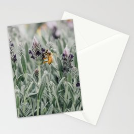 lavender bloom + bee Stationery Cards