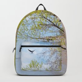 Land Sea and Sky Backpack