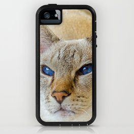 SIAMESE CAT LOVE iPhone Case
