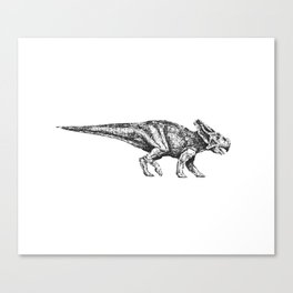 Protoceratops Canvas Print