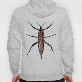 beetles_dream_04 Hoody