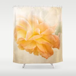 Roses forever Shower Curtain