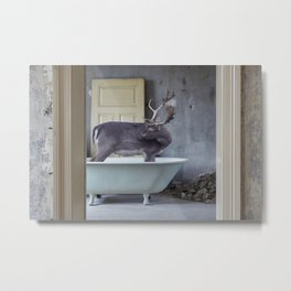 Abandoned place wildlife Metal Print