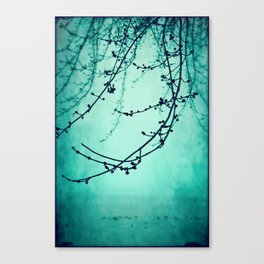 Fog of Green Canvas Print