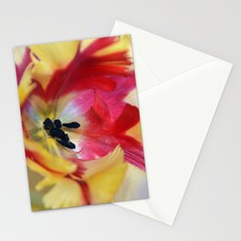A tulip like a painter's palette Stationery Cards