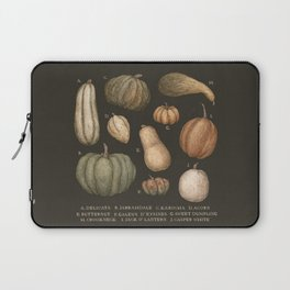 Pumpkins and Gourds Laptop Sleeve