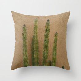 Cabo Cactus XI Throw Pillow