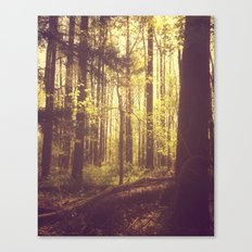 She Experienced Heaven on Earth Among the Trees Canvas Print