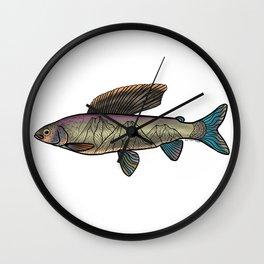 Arctic Grayling Wall Clock