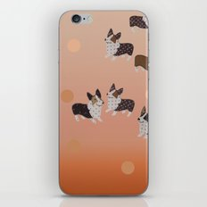 corgi dots - rust iPhone & iPod Skin