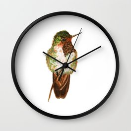 Volcano Hummingbird Wall Clock