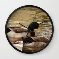 ducks Wall Clocks featuring Ducks by Sciuridae