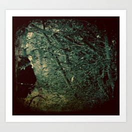 Into the Enchanted Forest Art Print