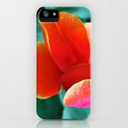 Keukenhof iPhone Case