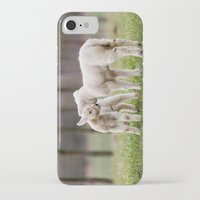lamb iPhone & iPod Cases featuring lamb by Marcel Derweduwen