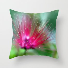 There Weren't Enough Words for the Colors. Throw Pillow