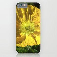Golden Poppy Slim Case iPhone 6s