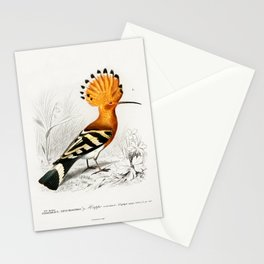Huppe Stationery Cards