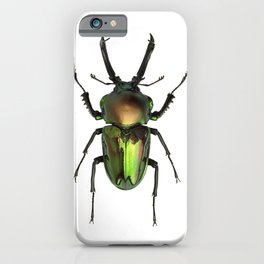 Rainbow Stag Beetle iPhone Case