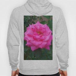 Floral Print 106 Hoody