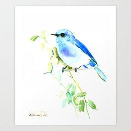 Mountain Bluebird homde decor Art Print