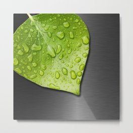 Green Wet Leaf & Metallic Background Metal Print
