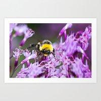 bee Art Prints featuring Bee by Dora Birgis