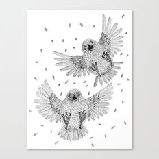 Chicks of prey (belligerant and unconquered) Canvas Print
